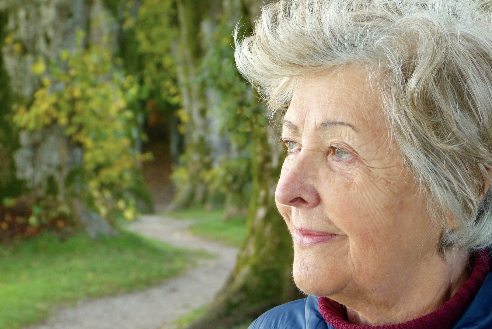 dynamo ouderen